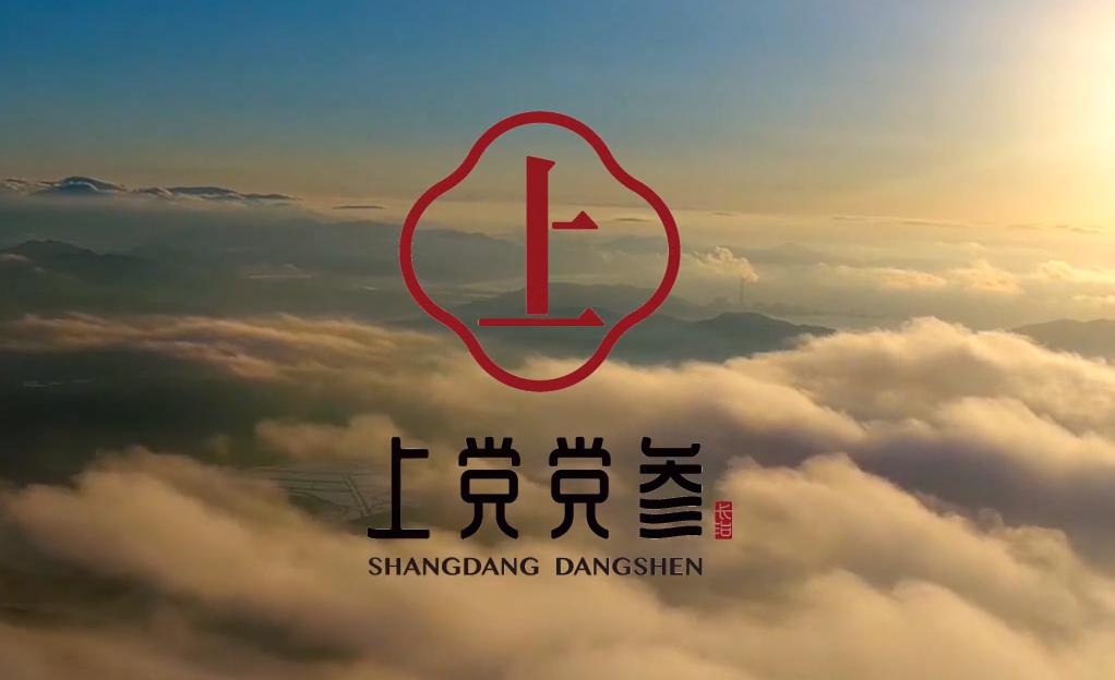 上党党参品牌宣传片